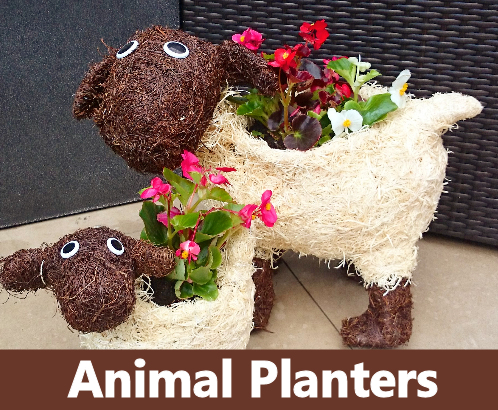 Paws and petals brushwood animal planters